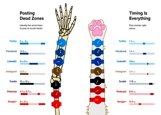 Horarios en Redes Sociales